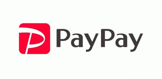 paypay 2.jpg